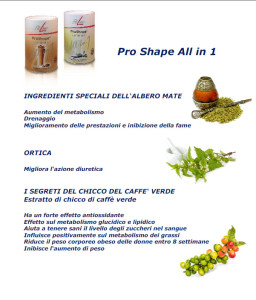 ingredienti proshape all in 1