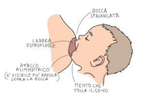 Presa-corretta-allattamento